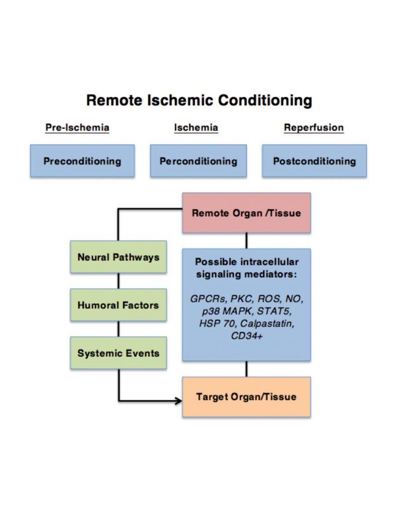 Remote-Ischemic-Conditioning